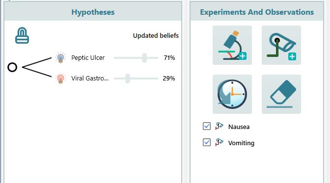 hypothesis updates